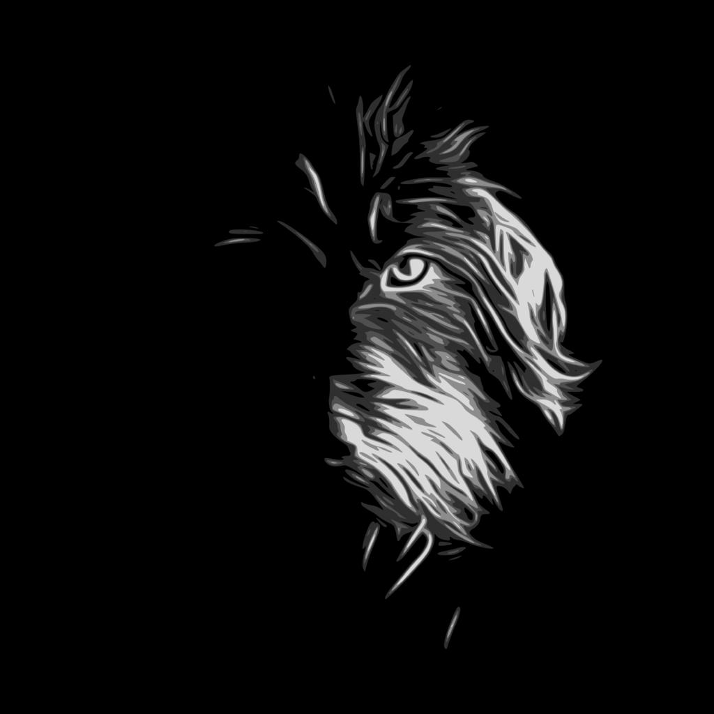 Dackel Motiv Zeichnung Schatten