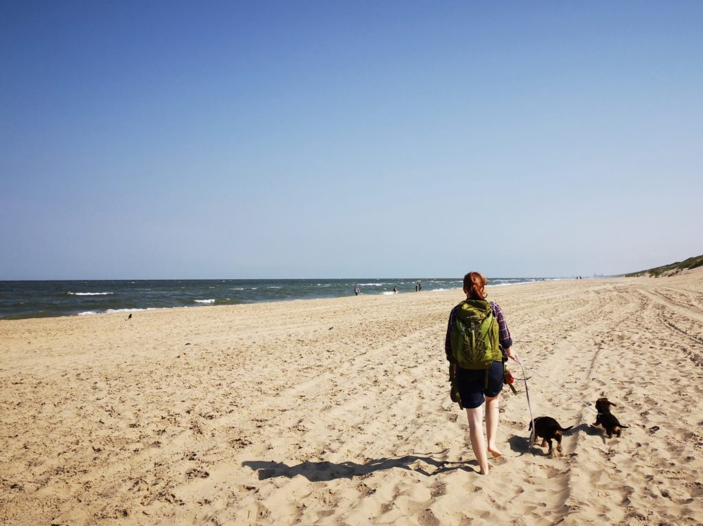Holland Hundestrand