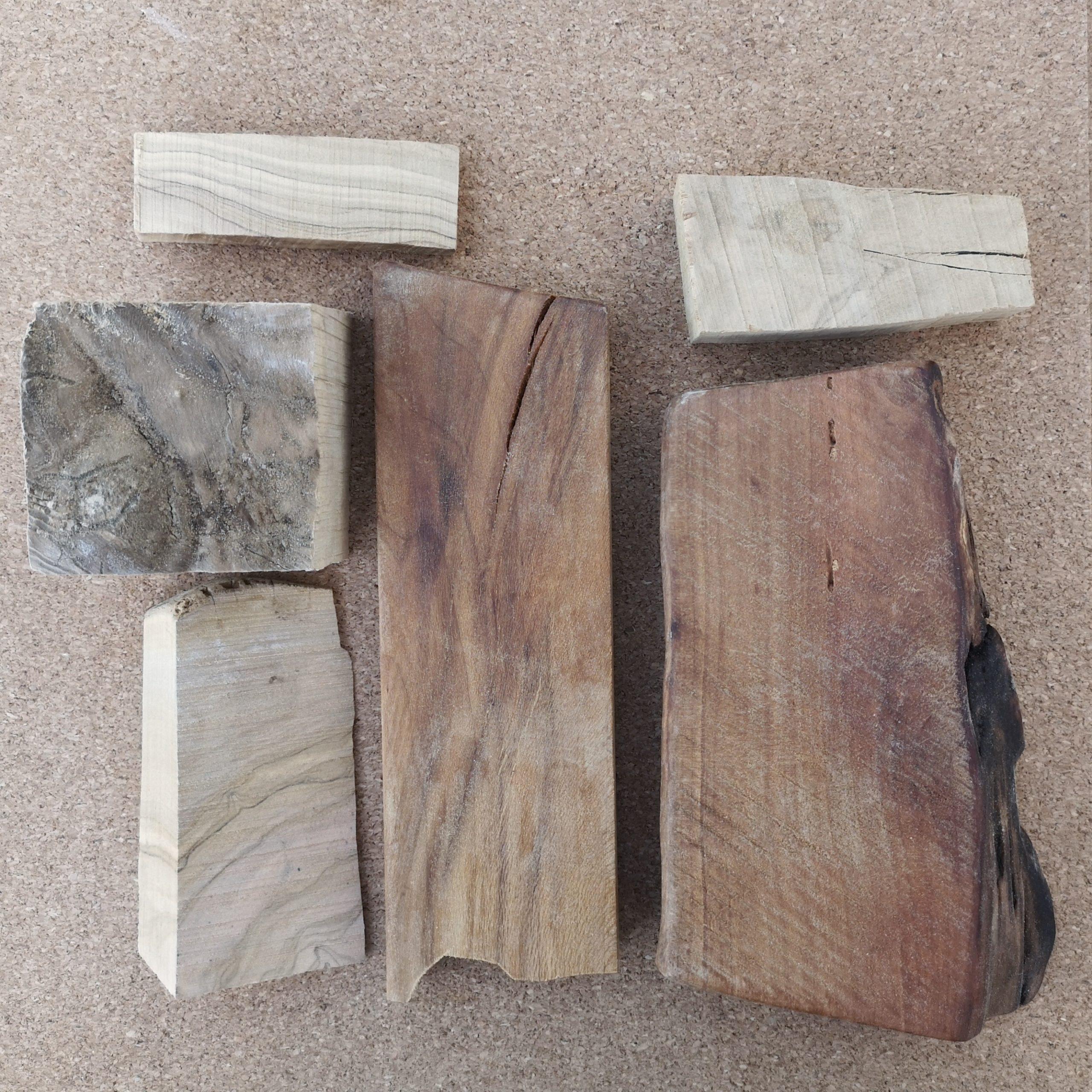 Holz für Schmuck und Dackel