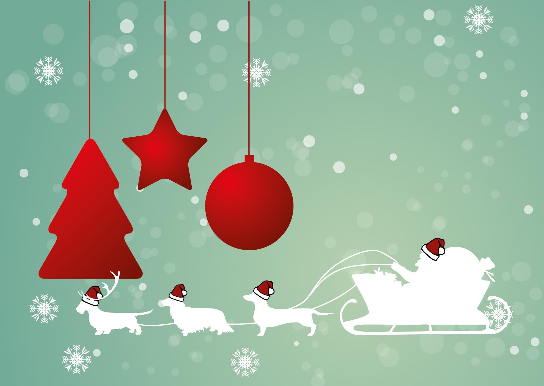 Weihnachtskarte Dackel